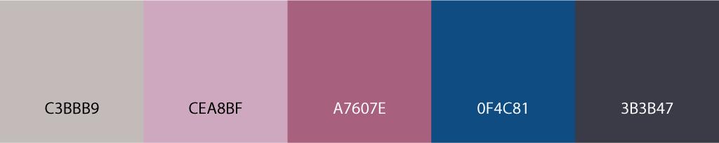 Pantone Klasik Mavi - Exotic Renk Paleti